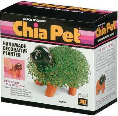 chia pet animals puppy